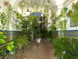 01 Casa de las Flores150815