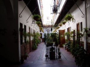 Corral de Herrera, Triana