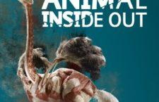 """El sábado 23 visita especial a """"Animal Inside Out"""" con el naturalista Carlos Llandres"""