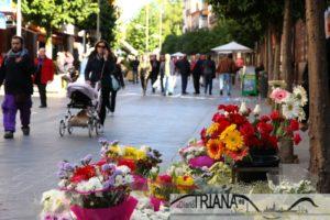 San Jacinto_flores