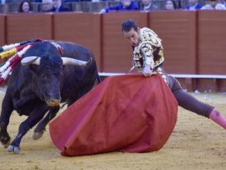 corrida toros
