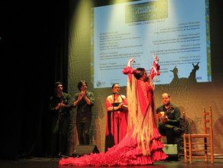 concurso, talento, flamenco,