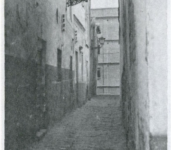 calle Cisne